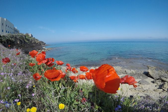 Playa Le Celestine