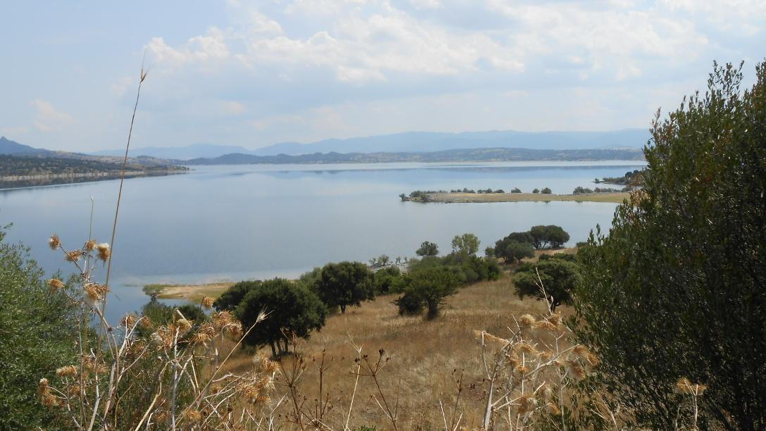 Panorama of the Coghinas lake