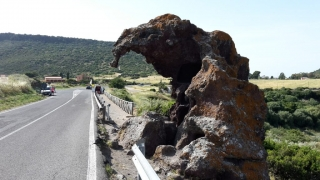 The curious Elephant rock